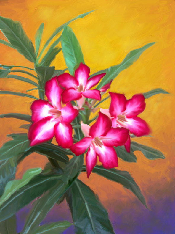 Lukisan Bunga Kamboja Nirbayaartgallery